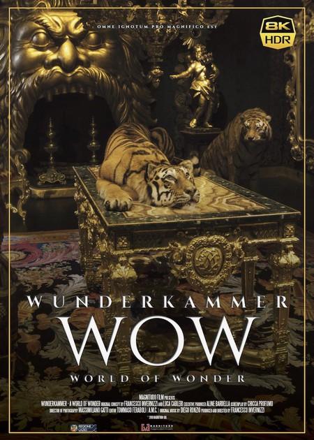 LA STANZA DELLE MERAVIGLIE - WOW (WUNDERKAMMER - WOW - WORLD OF WONDER)